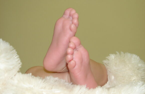 Kipper Feet