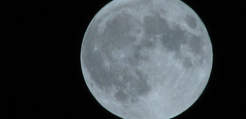 Full Moons Make People Do Weird Things